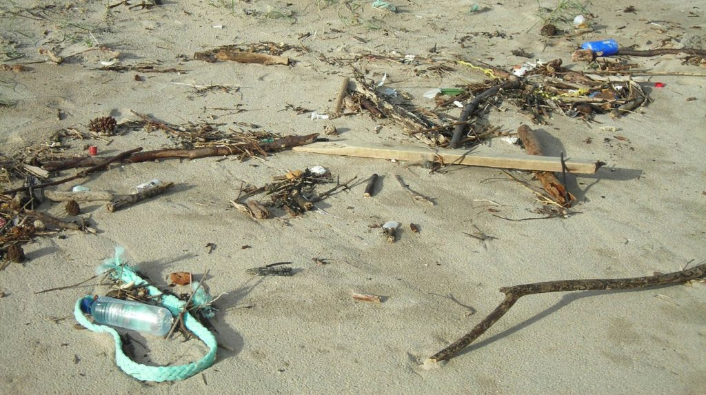 Marine litter in coastal areas