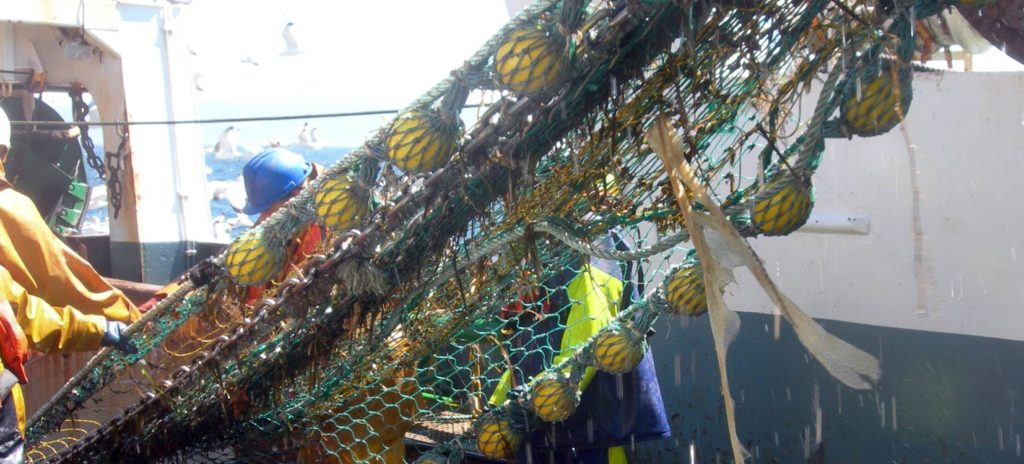 Marine litter in fishing gears - courtesy of CETMAR