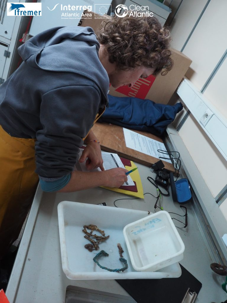 Processing samples in the lab